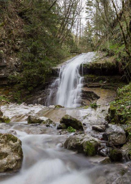 Foto cascata nel bosco luca gherardi