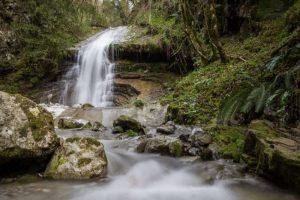 foto cascata nel bosco
